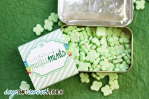 DIY Candy Mints and Tin | Saynotsweetanne.com