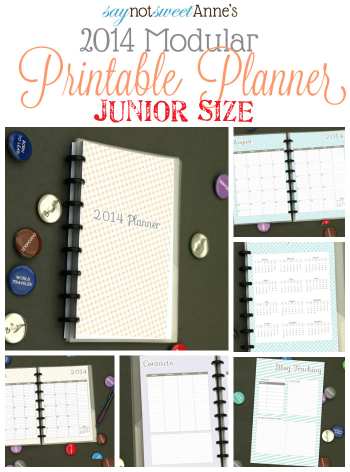 Amazing Printable Junior Sized Planner! Jan - Dec '14 with tons of choices! Meal planning, lesson planning, kid sport tracking etc!   from saynotsweetanne.com   #planner #printable #organize #student #meal #mommy #lesson