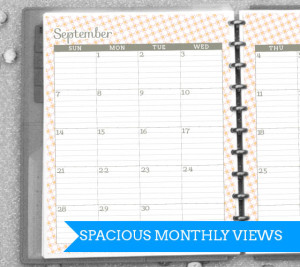 Amazing Printable '14 - '15 Student  Planner! Room for homework, class schedule, month/week views and more!  from saynotsweetanne.com   #planner #printable #organize #student