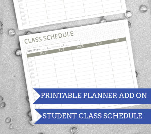 Amazing Printable '14 - '15 Student  Planner! Room for homework, class schedule, month/week views and more!| from saynotsweetanne.com | #planner #printable #organize #student
