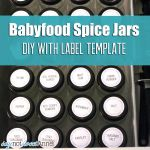 Baby Food DIY Spice Jars