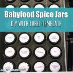Baby Food DIY Spice Jars