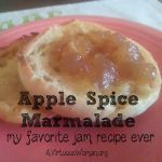 Apple Spice Marmelade by A Virtuous Woman
