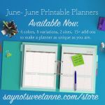 2015 June – June Planners, NEW Options!!
