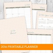 Ashley Orange 2016 Printable Planner