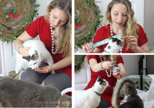 Friskies new Pull 'n Play treats are an edible string that you and your cats can play with! | Enter to win one of TWO Pull 'n Play treat bags!