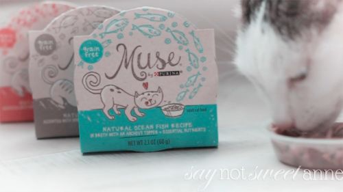 Muse Cat food review at saynotsweetanne.com