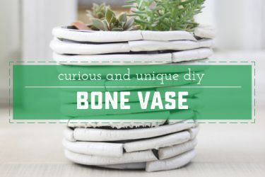 Curious and Unique DIY Bone Vase - Don't worry - it's not really made of bones! Great for dressing up indoor plants | saynotsweetanne.com