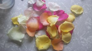 BloomsyBox Review for Tested Tuesday. I received a bouquet of lovely flowers from BloomsyBox - here is my experience.