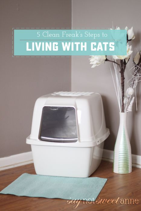 Clean Freak's Guide to Living With Cats - How to keep an odor and litter free litter box | saynotsweetanne.com