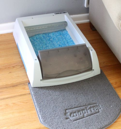 ScoopFree Litter box Review - How to live with a litter box | saynotsweetanne.com