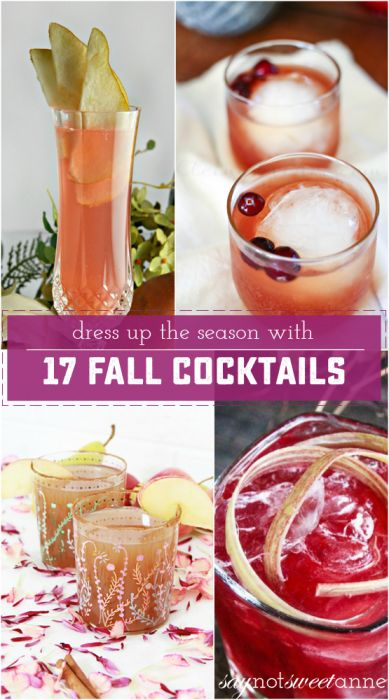 17 Amazing Fall cocktails you'll love for holiday parties. Check out these fall drinks, and resolve to try something new this year! | Saynotsweetanne.com